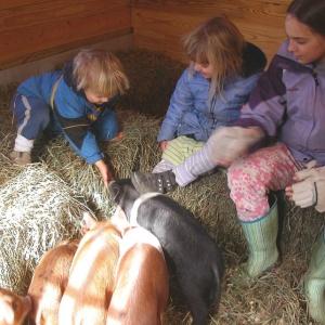 farm passion1